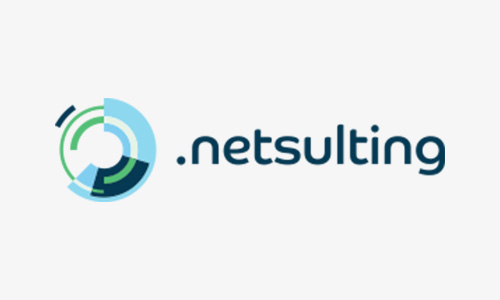 netsulting (1)